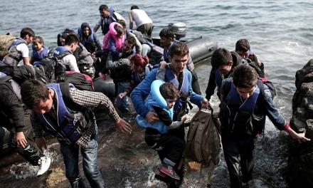 refugees 7